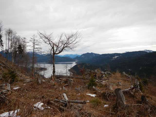 Simetsberg Blick auf den Walchensee