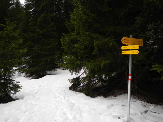Simetsberg Wegweiser im Schnee