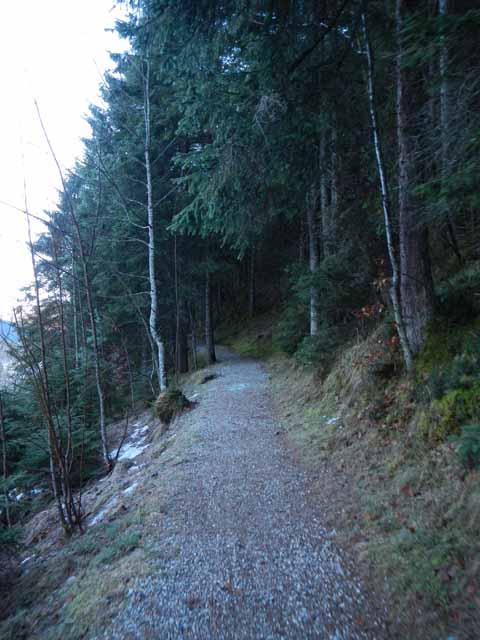 Schöttelkarspitze Aufstieg durch den Wald